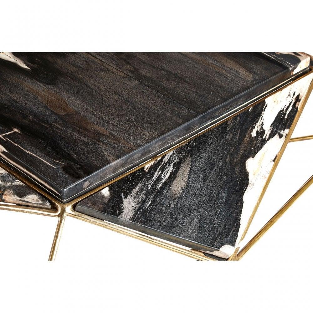- Relic Dark Petrified Wood Coffee Table, Iron, Petrified Wood
